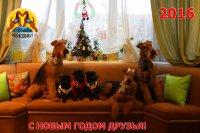 С наступающим Новым Годом друзья!