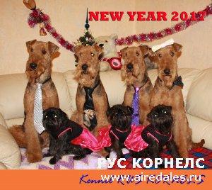 С Новым Годом друзья!!!
